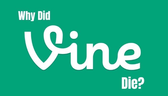 why did vine die